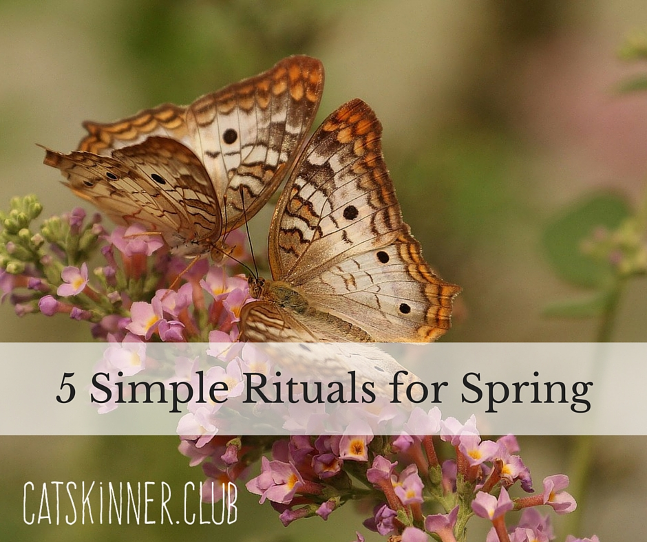 5 Simple Rituals for Spring